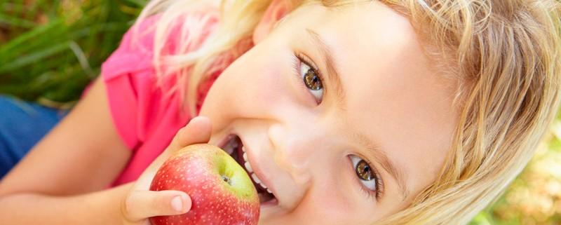gesunde Ernährung unterstützt durch den Chiropraktiker Landmann bei Hamburg