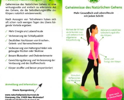 Chiropraxis Landmann Vortrag natürliches gehen Flyer